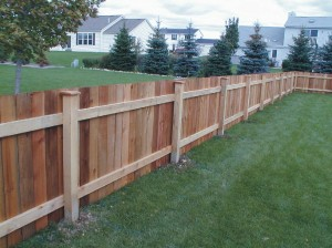 fence 1